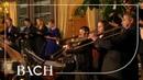 Bach Cantata Auf schmetternde Töne BWV 207a Van Veldhoven Netherlands Bach Society