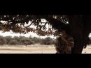 BONEZ MC RAF CAMORA - RISIKO (prod. by X-Plosive The Cratez )