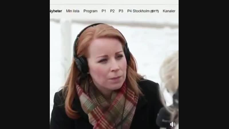 Annie Lööf vil løfte byen Värnamo til en foregangsby for integrationen.