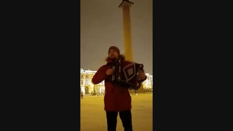 гармонь на Дворцовой