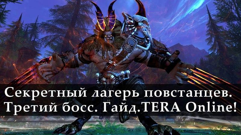Секретный Лагерь Повстанцев Гайд Третий босс TERA Online