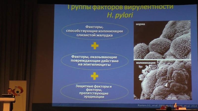 01 Маев ИВ Факторы патогенности H Pylori и ассоциированные риски для российской популяции пациентов
