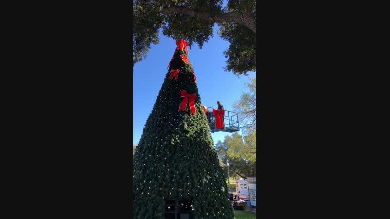 Christmas Tree Building City Hall Windcrest, Texas