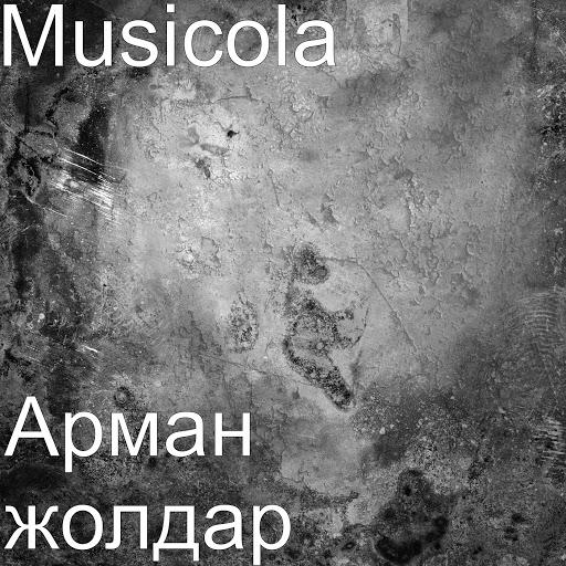 Мюзикола альбом Арман жолдар
