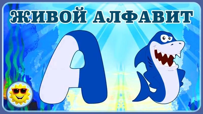 Живой алфавит для детей Учим буквы Мультик про букварь с животными Азбука для малышей