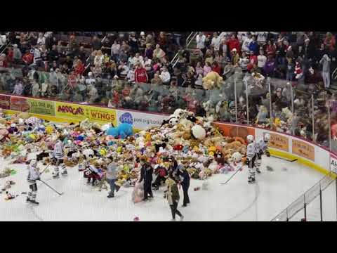 Hershey Bears collect 34,798 toys to set new Teddy Bear Toss record