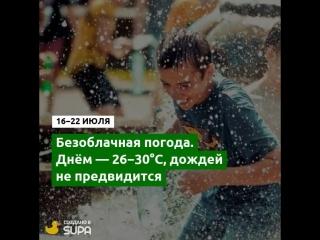 Когда закончится жара в Новосибирске