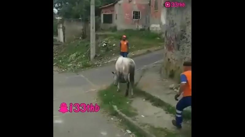Покатался на коне