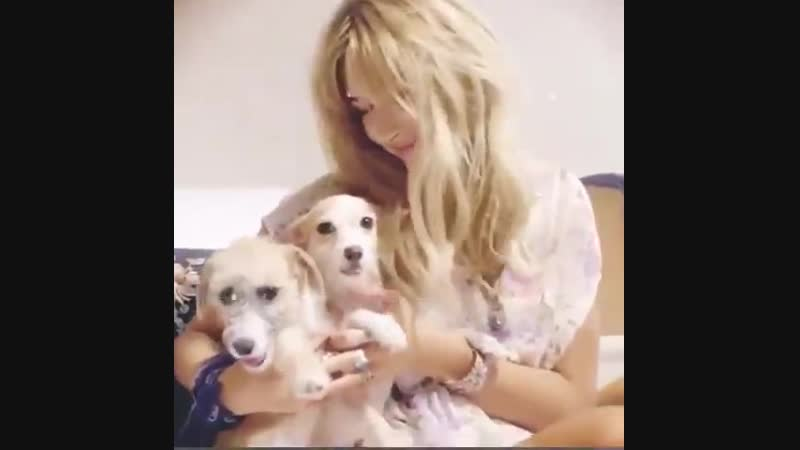 Hailey Baldwin also participated in the National Puppy Day foundation, so people could rescue animals or make donations to help