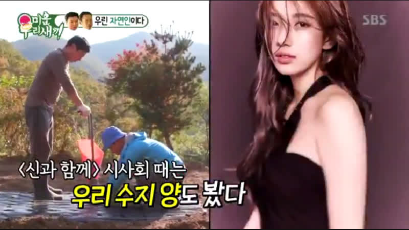 Сюзи была упомянута в программе Mom's Diary My Little Old Boy My Ugly Duckling от канала SBS