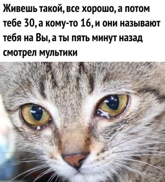 Марина Сургутскова | Омск