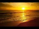 ШУМ МОРЯ. Морской прибой. Волны. Звуки природы. relaxation. THE SOUND OF THE SEA