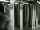 ♫-Mina-♪-Sono-Come-Tu-Mi-Vuoi-(Short-Version)-♫-Video--Audio-Restored