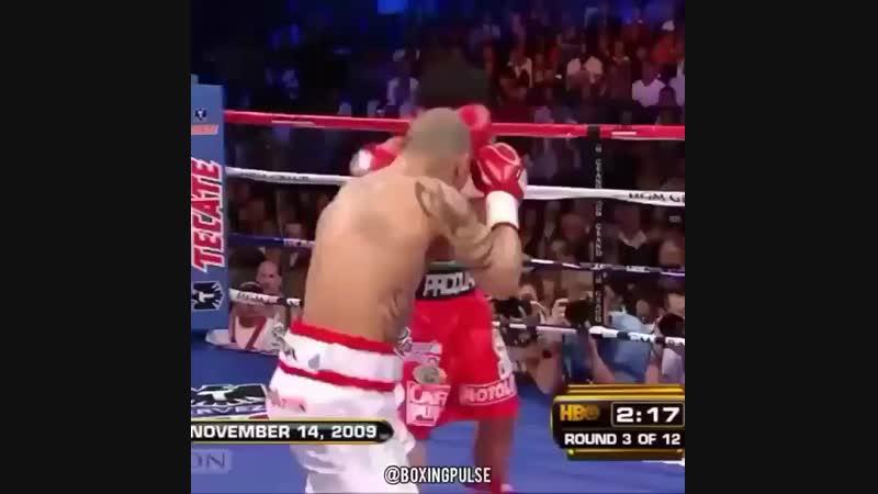 Мэнни Пакьяо уничтожаетет Мигеля Котто