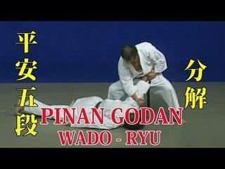WADO - RYU Kata Pinan Godan (Bunkai)和道流 形 分解 (平安五段)