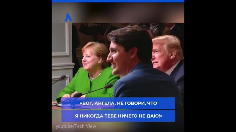 Трамп бросил конфеты в сторону Меркель на саммите G7 АКУЛА