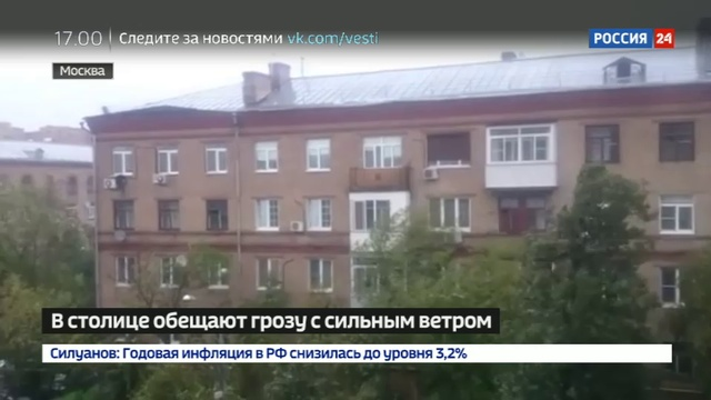Новости на Россия 24 • В Подмосковье из-за упавшего дерева отключились 18 трансформаторных подстанций