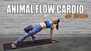 Joanna Soh - Fun Animal Flow Cardio at Home (No Weights!)   Интервальная тренировка для похудения и тонуса мышц с оригинальными упражнениями