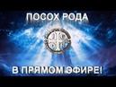 Посох Рода в прямом эфире! 15.09.18