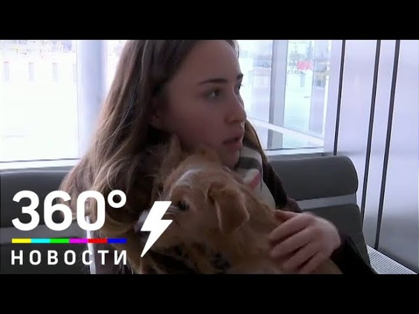 Россиянка спасла щенка от съедения в Китае
