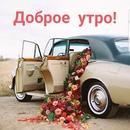 Анна Петрова фото #30