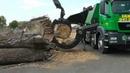 Chippo 8010C wood splitter