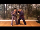 БИЕО.Gekisai ground up bunkai 3_ double hiki_kake uke to reverse punch