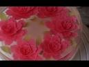 Hướng dẫn làm rau câu 3d đơn giản nhất - Amazing Gelatin Art Cakes