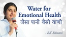 Water for Happiness: BK Shivani (English Subtitles)