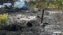 Згоріла заживо на згарищі сухої трави виявили тіло 82 річної жінки