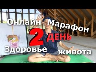 ДЕНЬ 2 - онлайн-марафон ЗДОРОВЬЕ ЖИВОТА