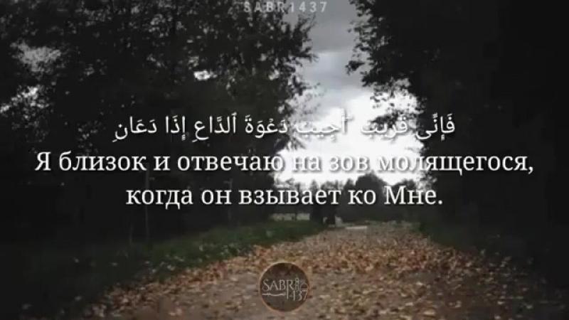 Ad.mp4