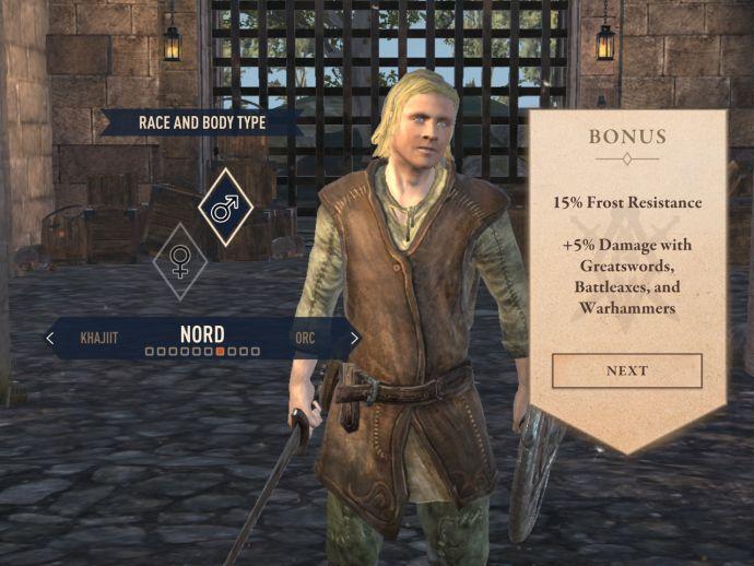 Норды в The Elder Scrolls Blades