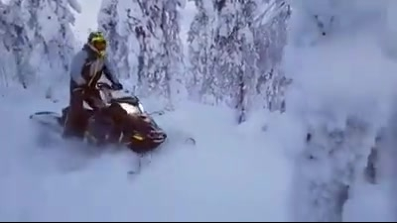 встреча снегохода и дерева-1