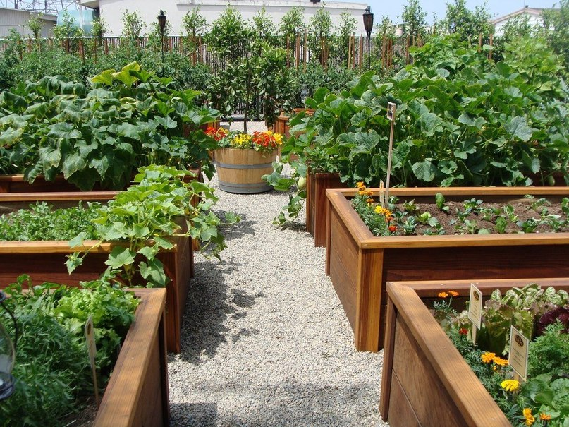 Красивые поделки для сада которые Вы можете сделать своими 54