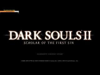 Страдания основного персонажа #1 (Dark Souls II Scholar of the First Sin)