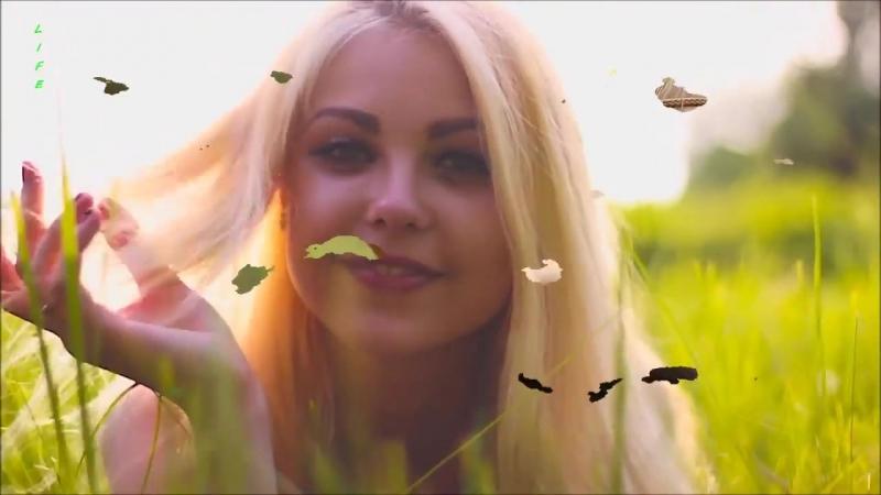 VETRA - Бонус на любовь ( сл.Ольга Фрем, аранж.Ben Sulyagin )