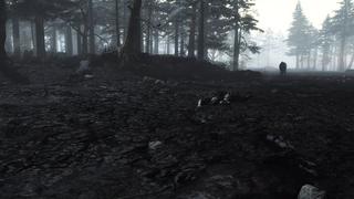Darkest Dungeon and Patreon support