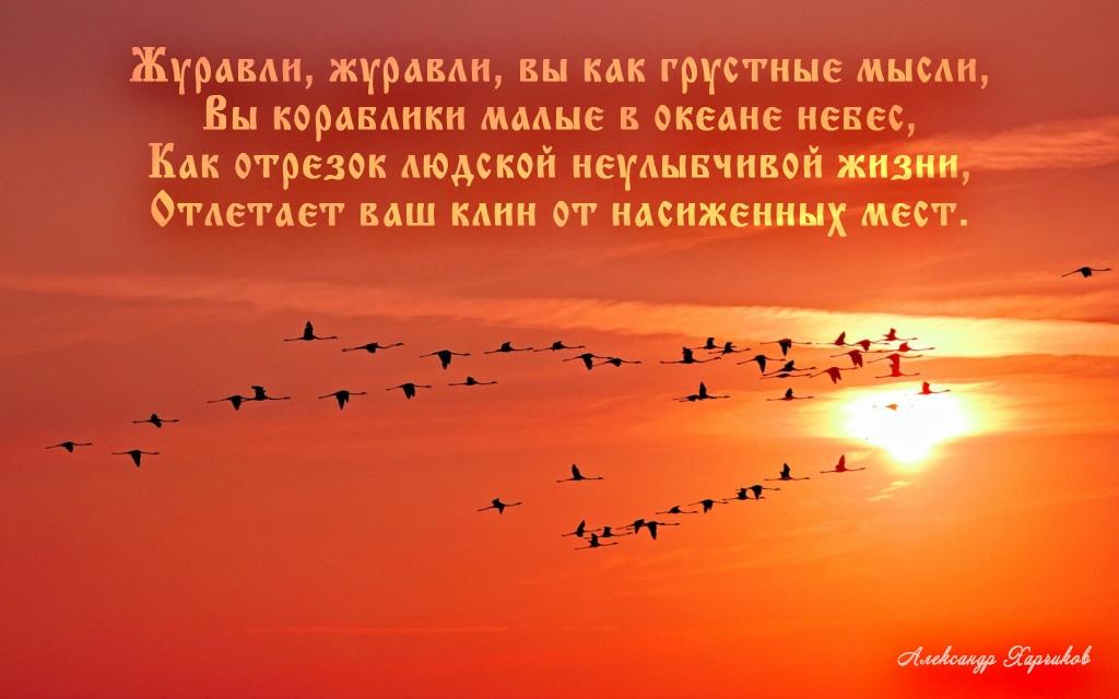 https://pp.userapi.com/c845121/v845121973/17b888/pLGgjt0J_uo.jpg