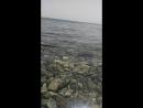 Первый раз на Красном море