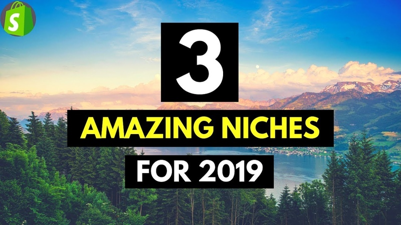 3 AMAZING Niches for 2019 Shopify Dropshipping (Shocking!)