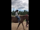 Амир на лошади
