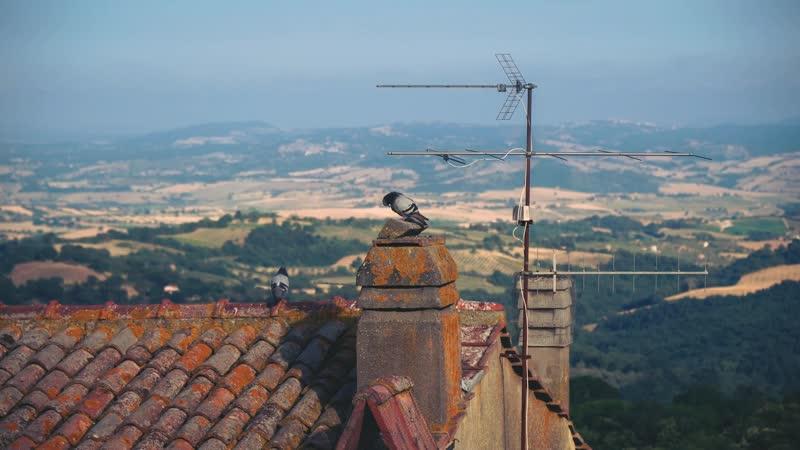 Голуби с видом на Тоскану Италия Pidgeons Overlooking Tuscany Italy