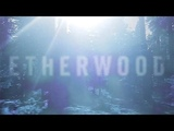 'Endorphins' Liquid Drum &amp Bass Mix ft. Etherwood, Netsky, Fred V &amp Grafix, and more (Week 107)