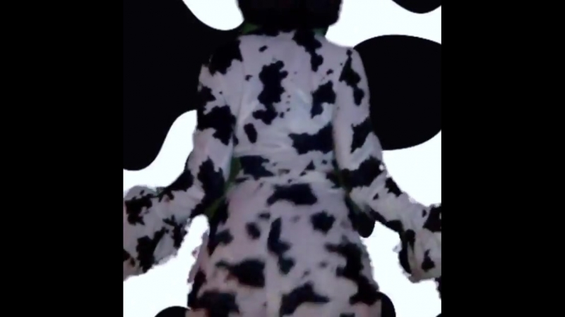Bitch I'm a cow 🐮