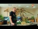 Странное дело.Планета динозавров.Хроника ликвидации.HD
