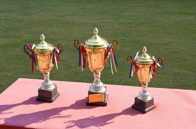 Спортсмены из Бибирева завоевали четыре медали на первенстве Международной федерации карате