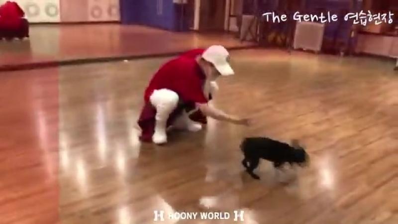 강성훈 단독 콘서트 - - THE GENTLE 연습 영상 4. - - 살랑살랑 후니님 파워풀한 후니님 - 신난 코코 - - 무한대의 가능함 - 너희와 함께일때 -