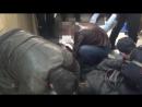 В Иркутской области полицейские задержали подозреваемых в сбыте фальшивых пятитысячных купюр