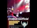 Группа Calpurnia на фестивале «Royal Mountain»; Гамильтон, столица Бермуд   2 сентября, 2018